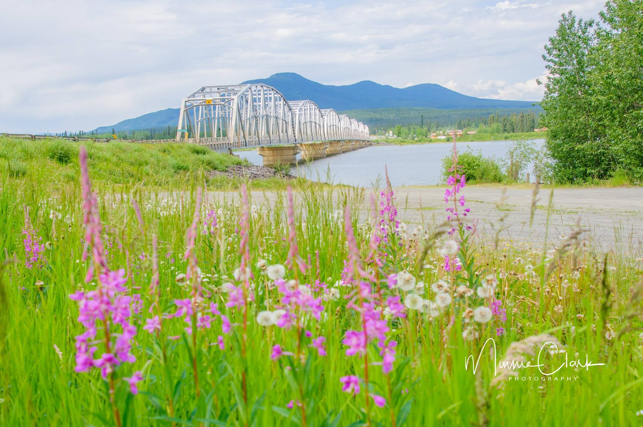 Teslin Bridge.jpg