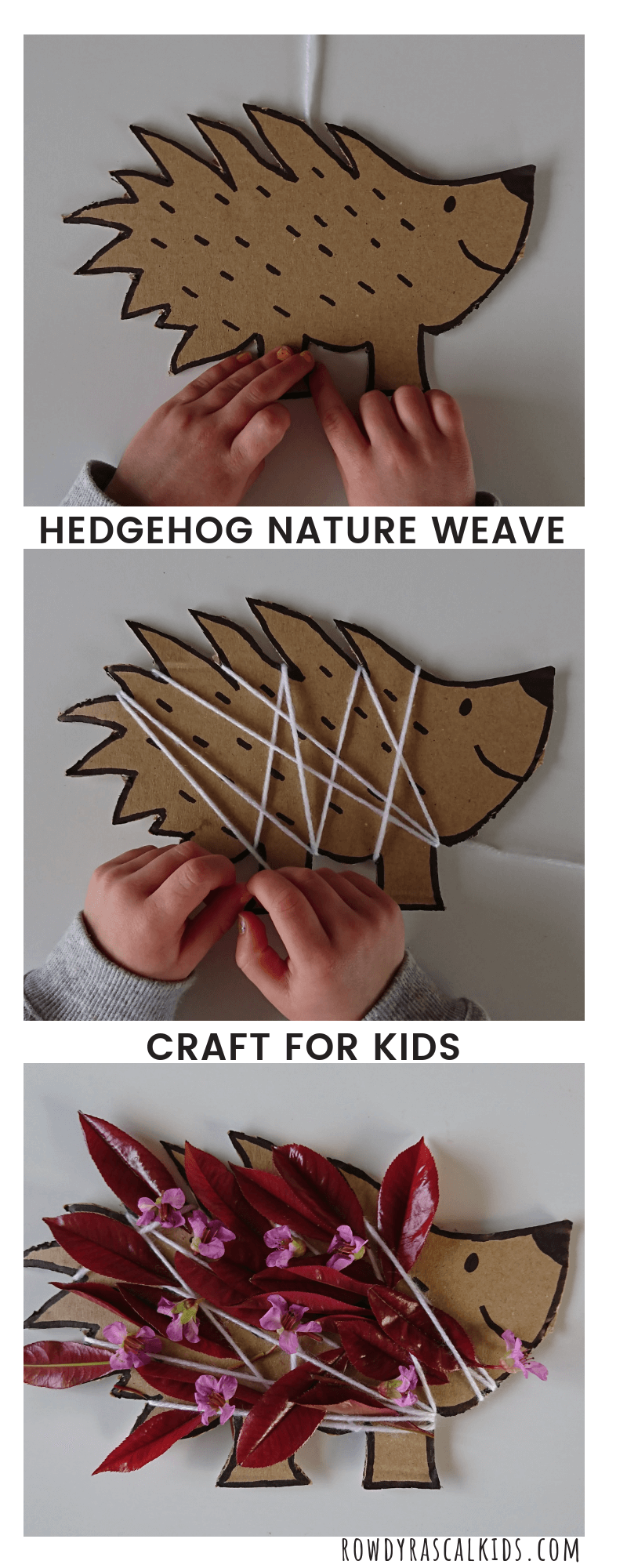 hedgehog nature weave