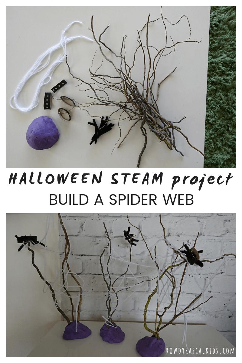 spider web steam challenge
