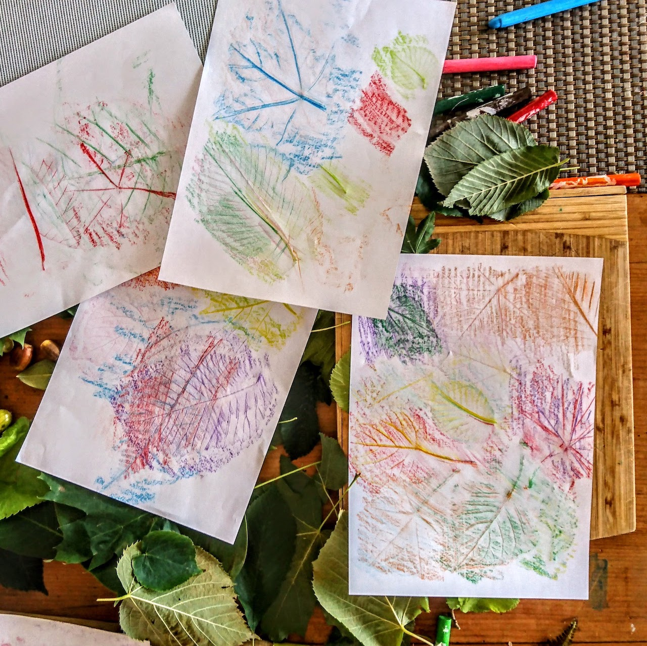 LEAF RUBBINGS.jpg