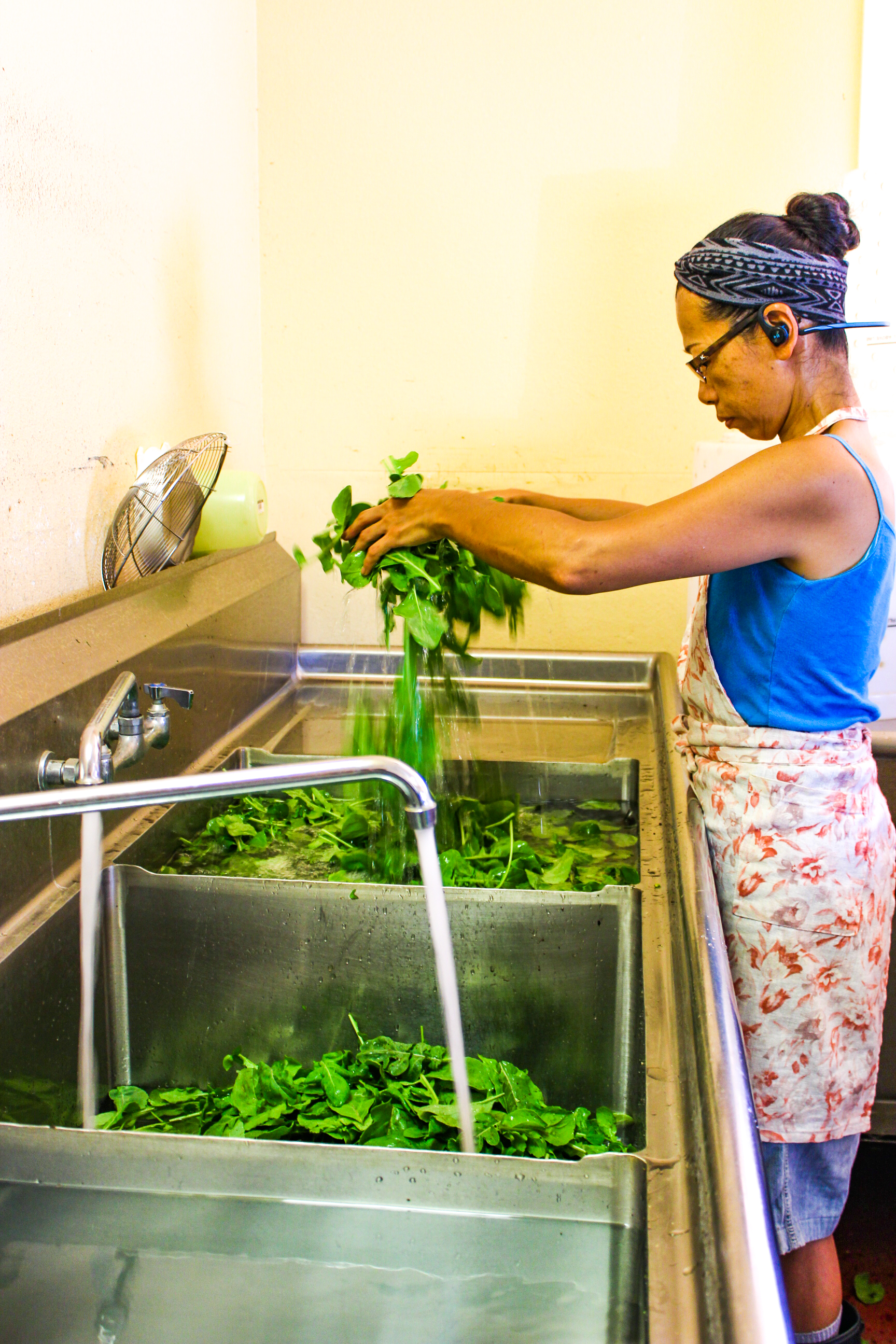 Kiyoko inspecting and washing arugula in the certified farm kitchen.