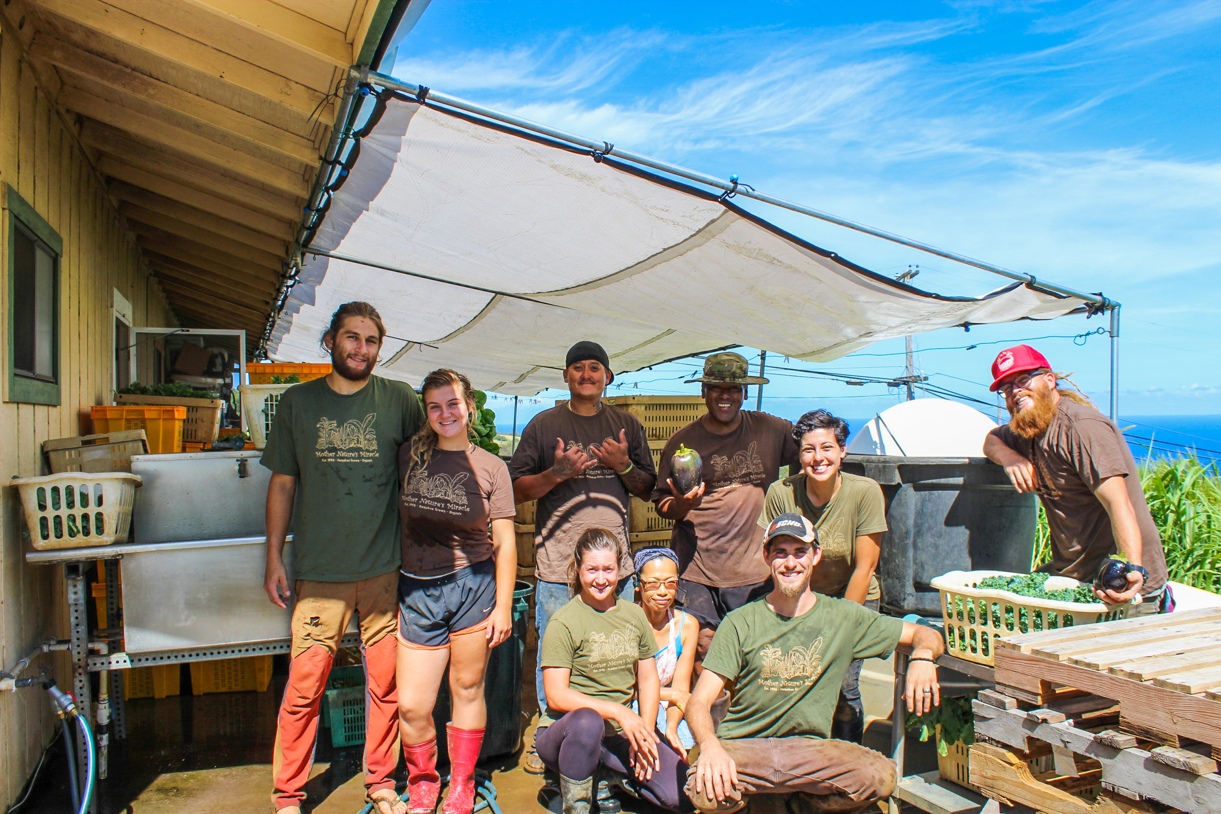 Mother Nature's Miracle employees on harvest day (L-R): Dain, Jacki, Royden, Kelsey, Kiyoko, Alfred, Nick, Brandy, Brandon