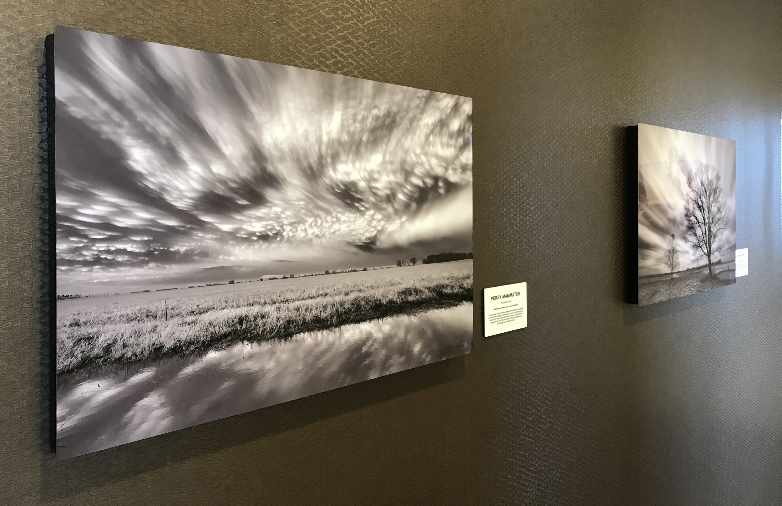 Perry Mammatus in situ at KCB 20 x 30 on metal