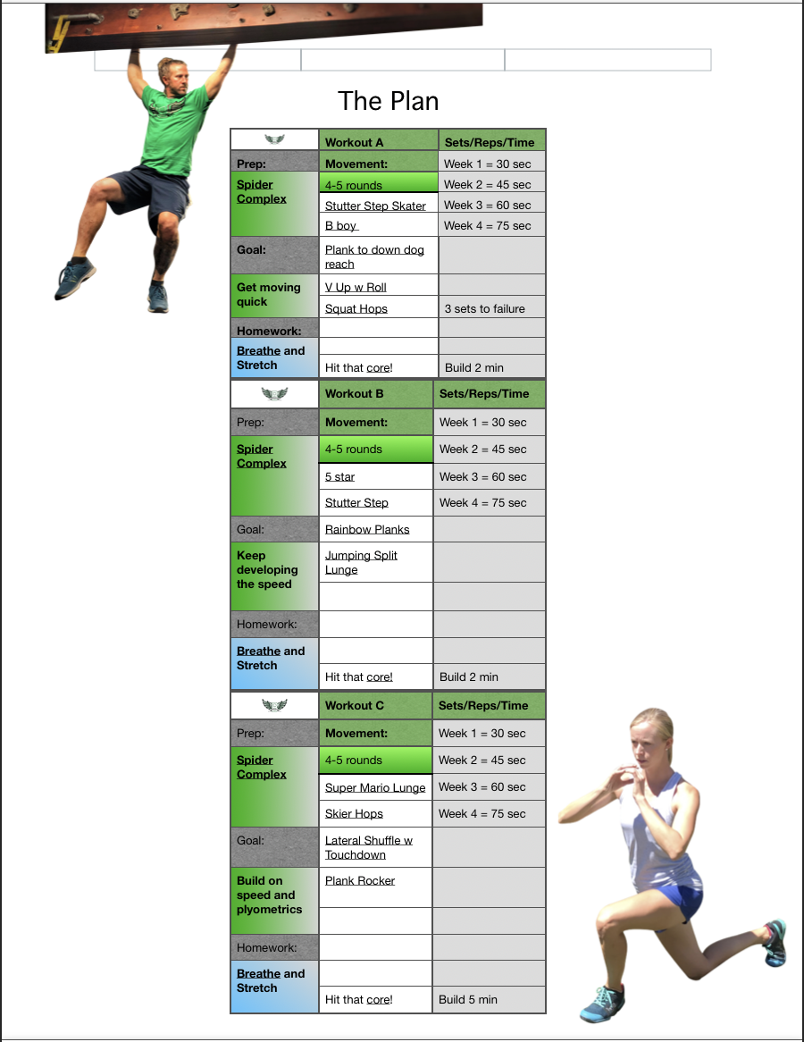 Ninjility - This is the program to create speed and muscle memory. Utilize this plan to develop the brain-body connection so you can do what you want exactly when you want to do it. This can be used as a stand alone program or as an addition to your current fitness routine.