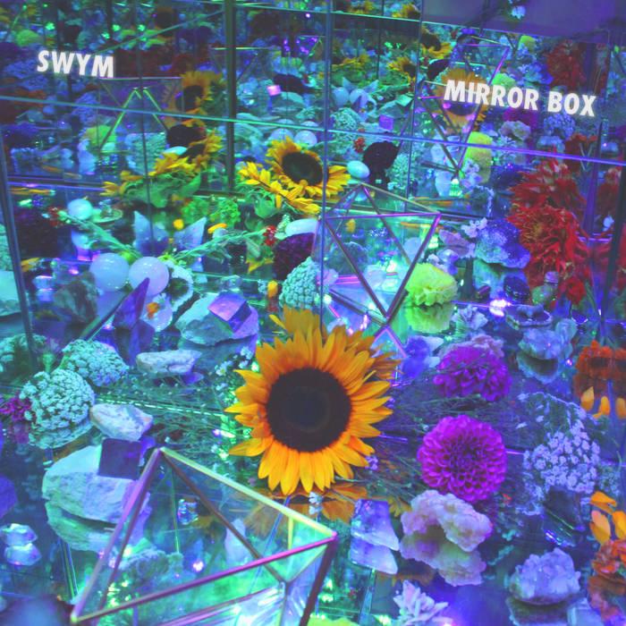 SWYM Mirror Box.jpg