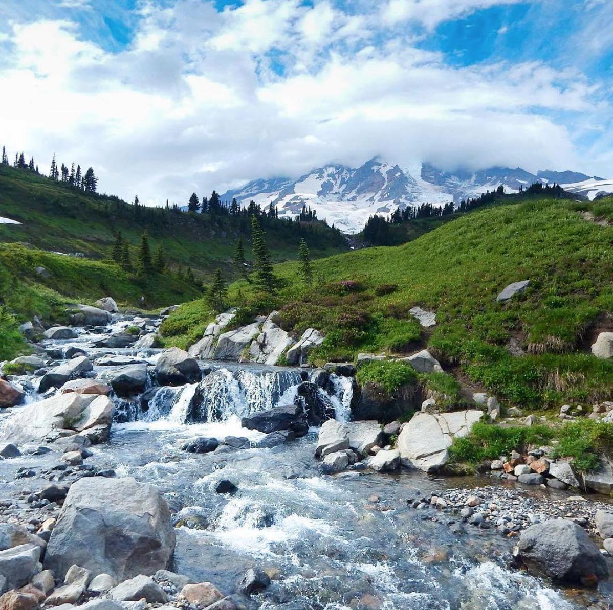 Photo of Mt. Rainier