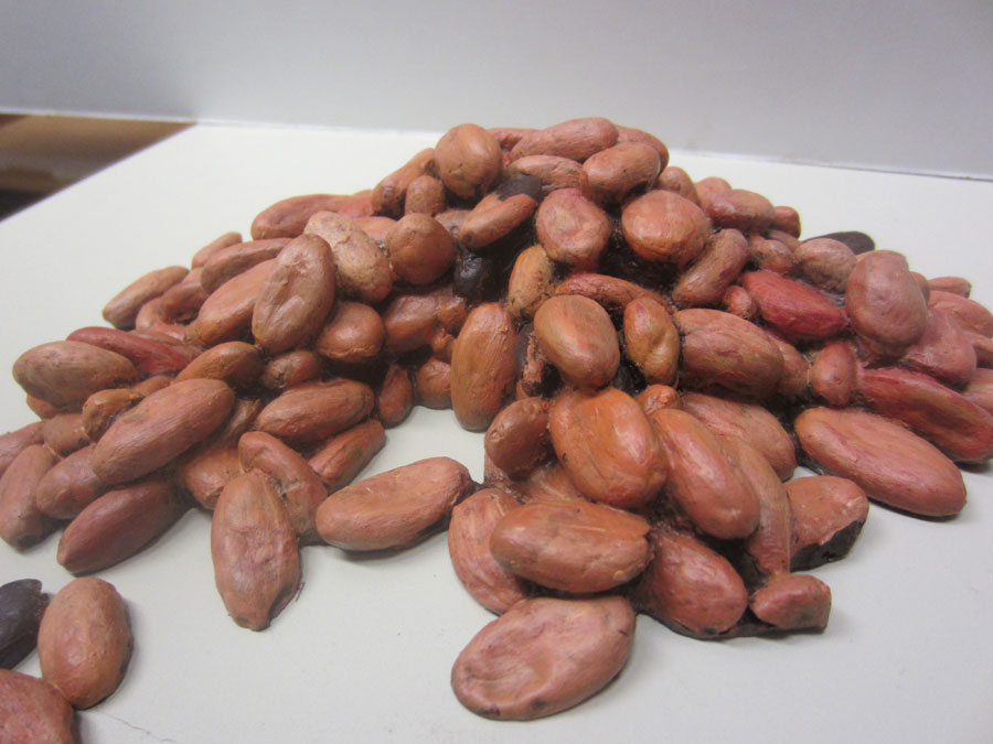 pile-of-cocoa-beans.jpg