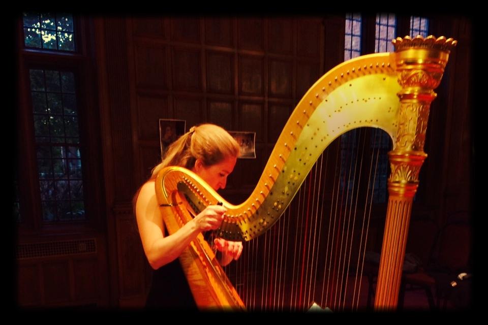 Merynda harp.JPG