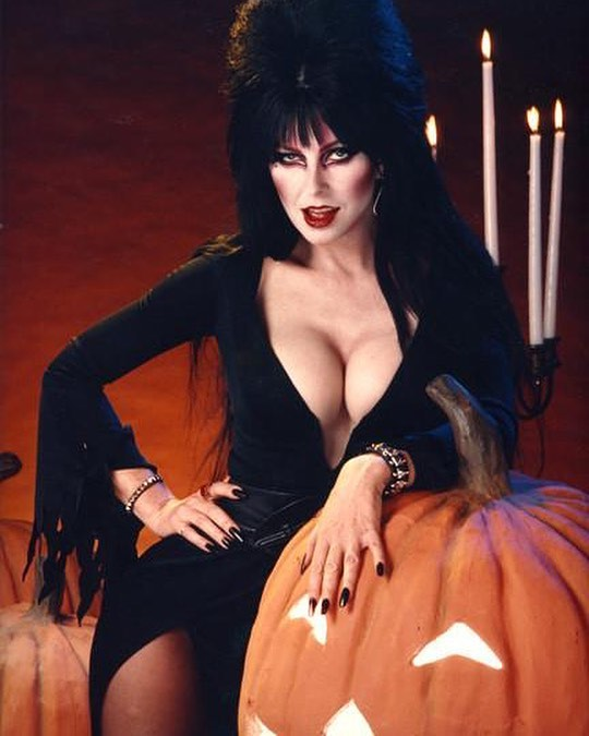 Love #halloween as much as we do?! Come celebrate in your costume on Saturday, October 27th at 8pm! We haven't thrown a party for a while so please share!! 21+ #allhallowseve #elvira