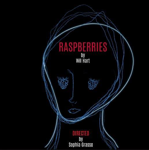 Raspberries at NYSummerfest - Katie is looking forward to assistant directing WIl Hart's newest play Raspberries in the NY Summerfest at the Hudson Guild Theatre! The show will be performing on the following dates:July 15th @ 6:15pmJuly 19th @ 9pmJuly 21 @ 4pm