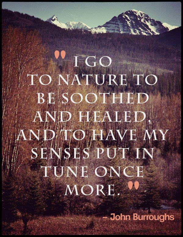 66ca632b6c7a0c523b1a474a6257cdfb--healing-power-nature-quotes.jpg
