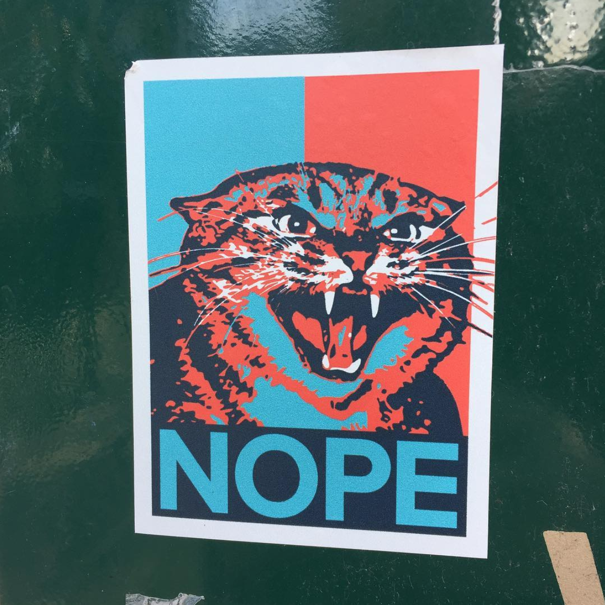 "Picture of Cat in the design of President Obama's original campaign Hope poster saying ""Nope"""