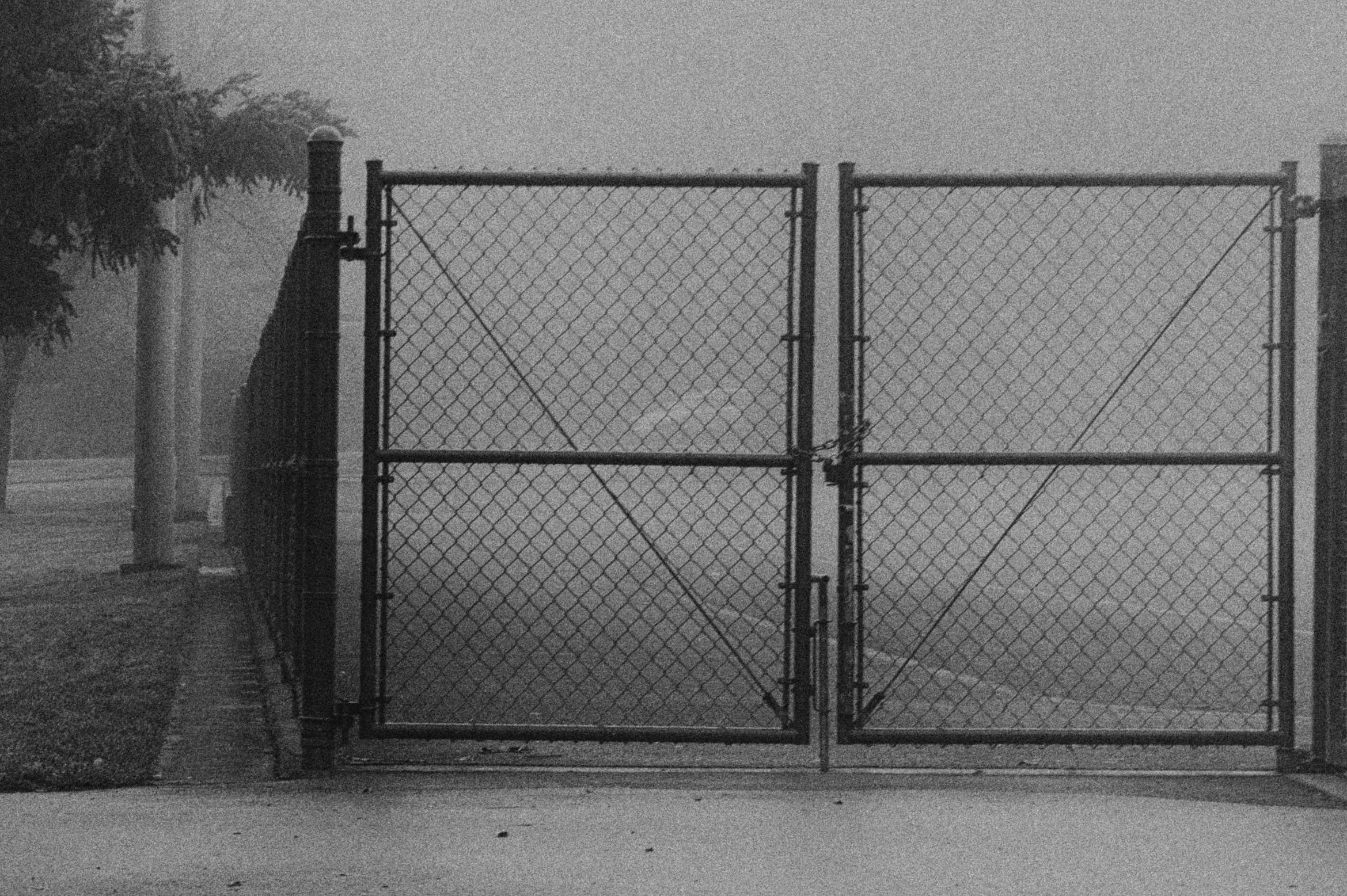 Stacey gates.jpg