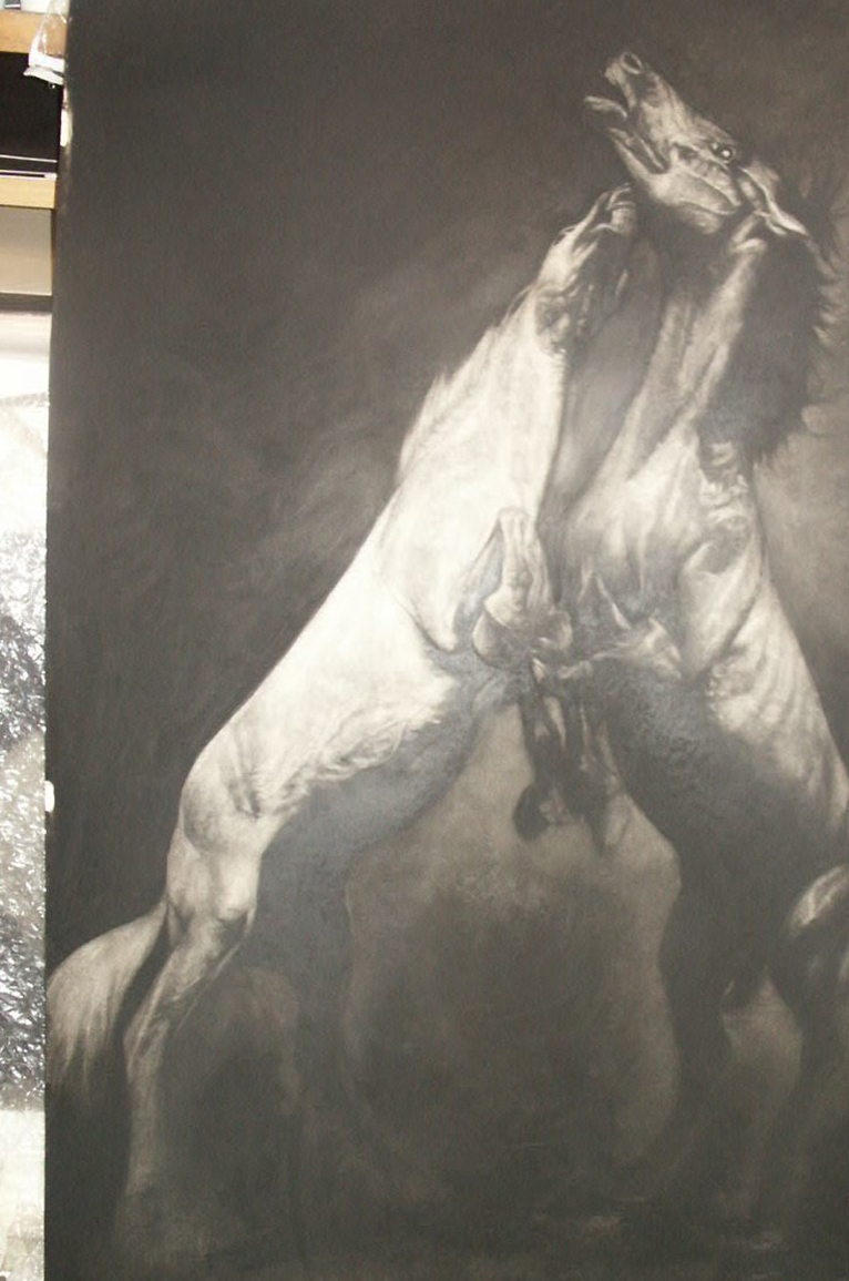 Fighting Stallions charcoal on board 44 x 70ins
