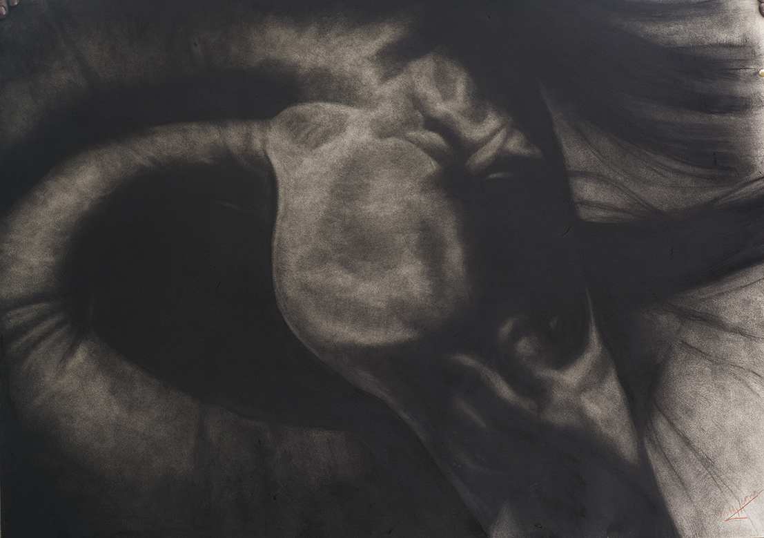 '' Handsome '' charcoal on board 32x44ins