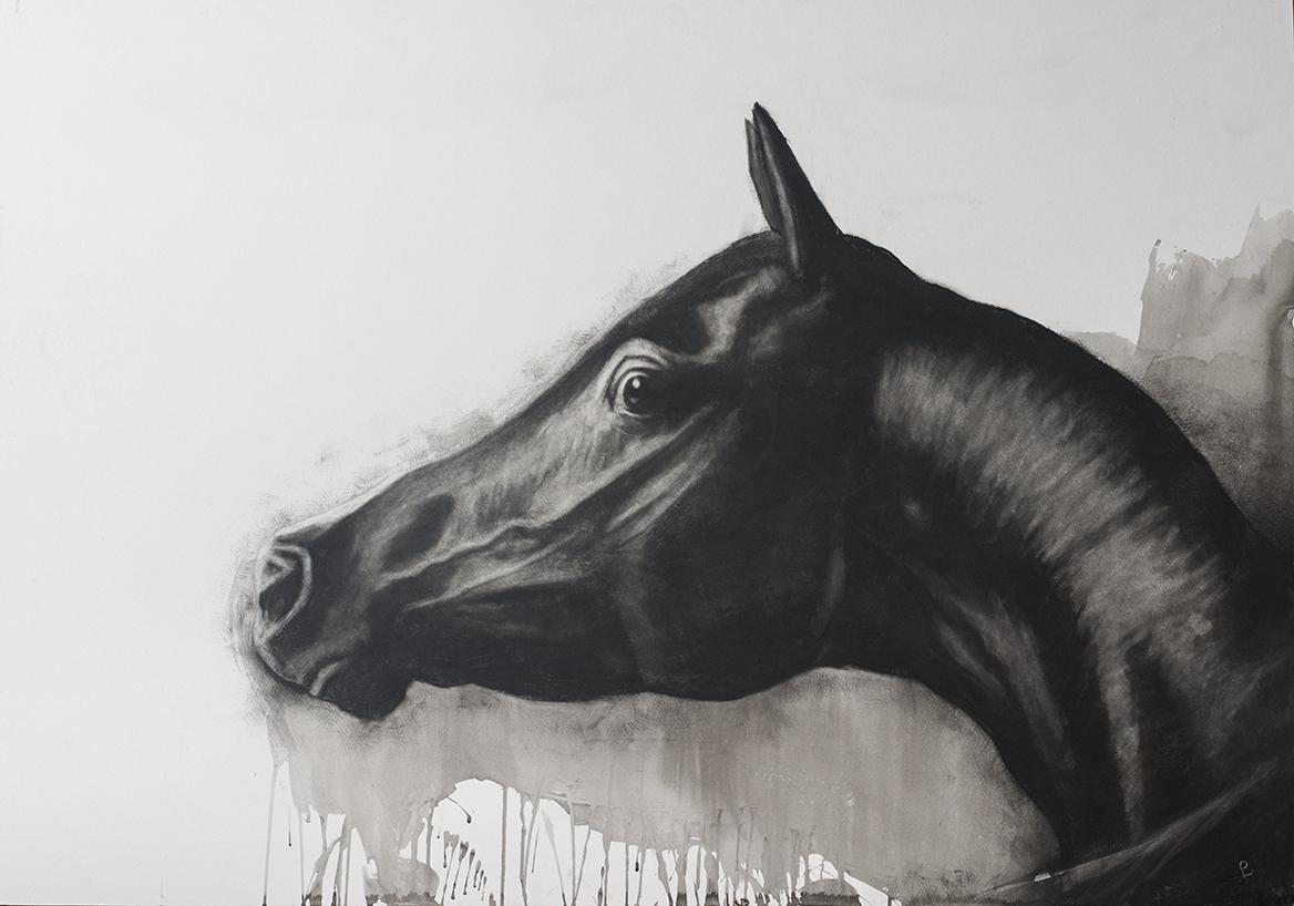 '' Arab Head '' Charcoal ,Ink on board , 32 x 44ins