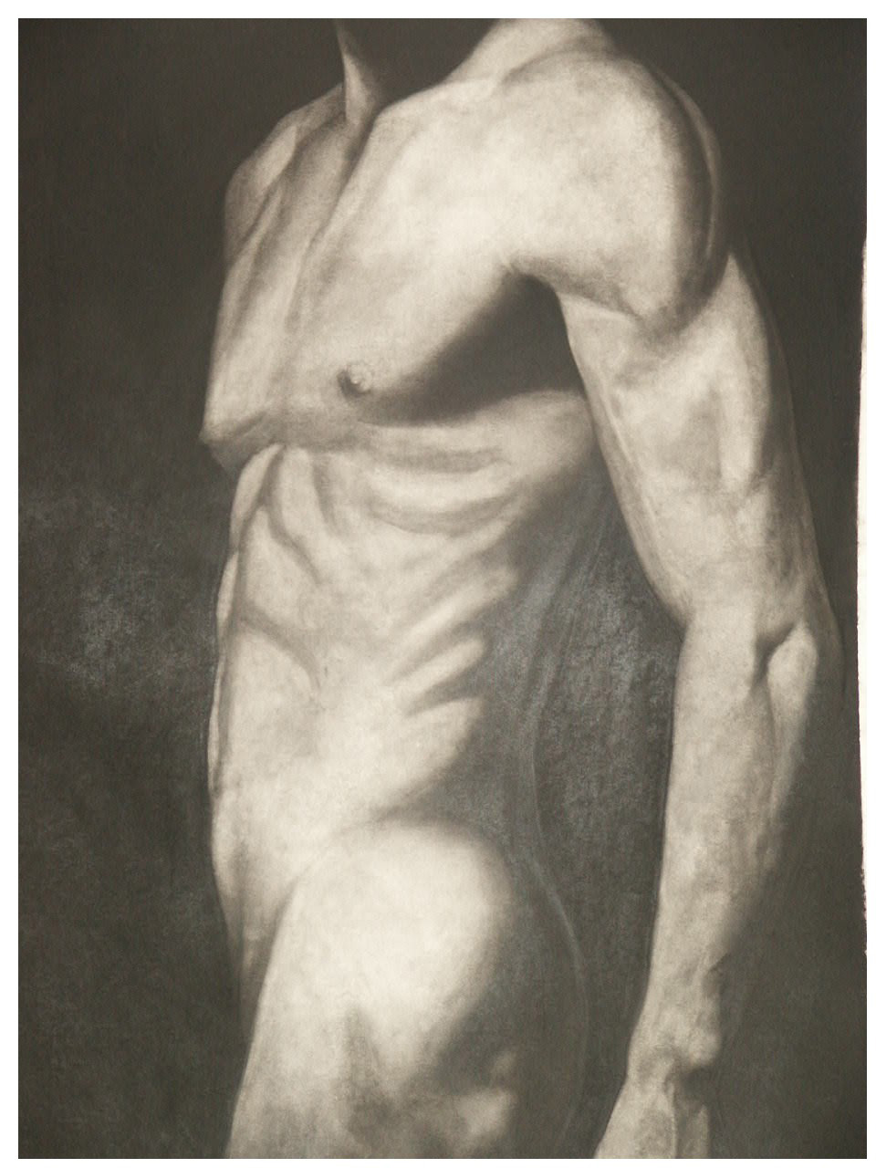 Standing nude charcoal on board