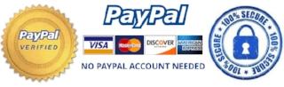 Torzal-Guitars-Secure-Paypal-Checkout-Logo.jpg