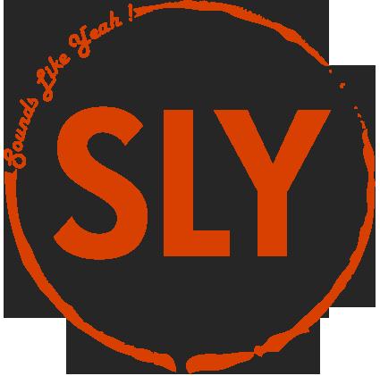 SLY_Logo_orange.png
