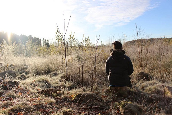Hawkwood college, stroud - WORKSHOP: MINDFULNESS IN NATURE - WITH ANDY RAINGOLDFor anyone who is curious about mindfulness and our connection to nature, this workshop includes meditation, movement, solo reflection time, sensory awareness and cultivating a more receptive mind.
