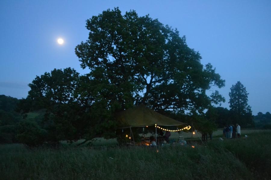 Where - Oak _ Full Moon (High Res).JPG