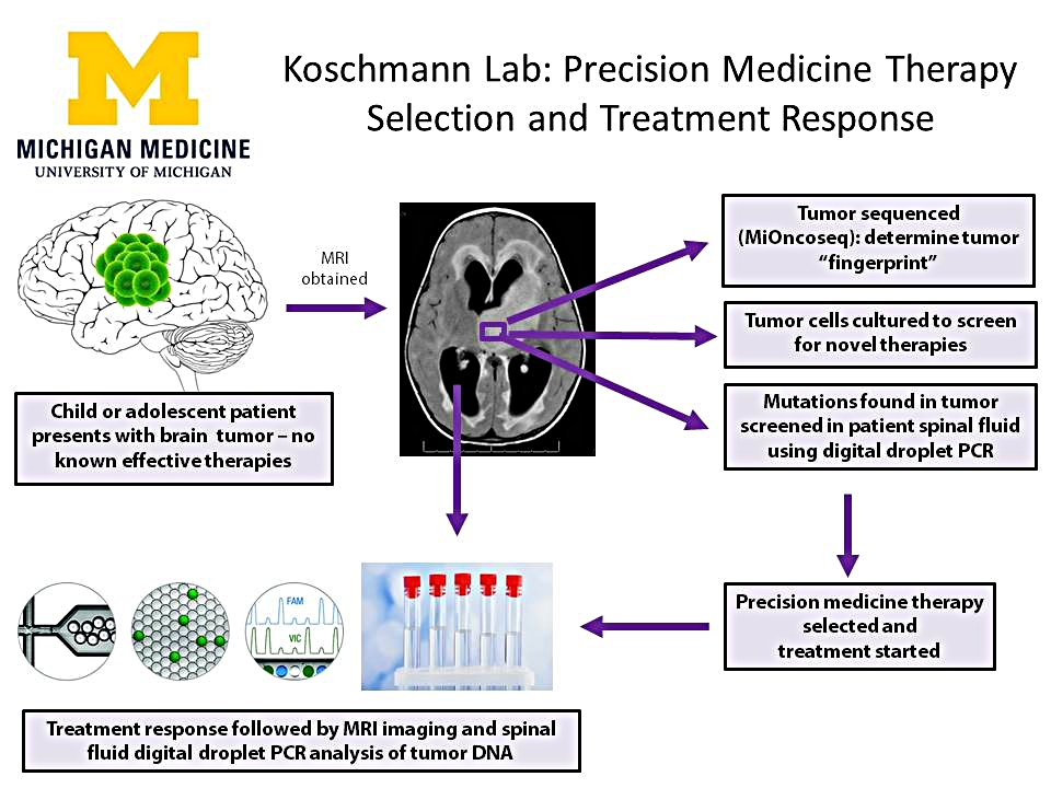 preicision medicine project - cost estimate EEG edits .jpg