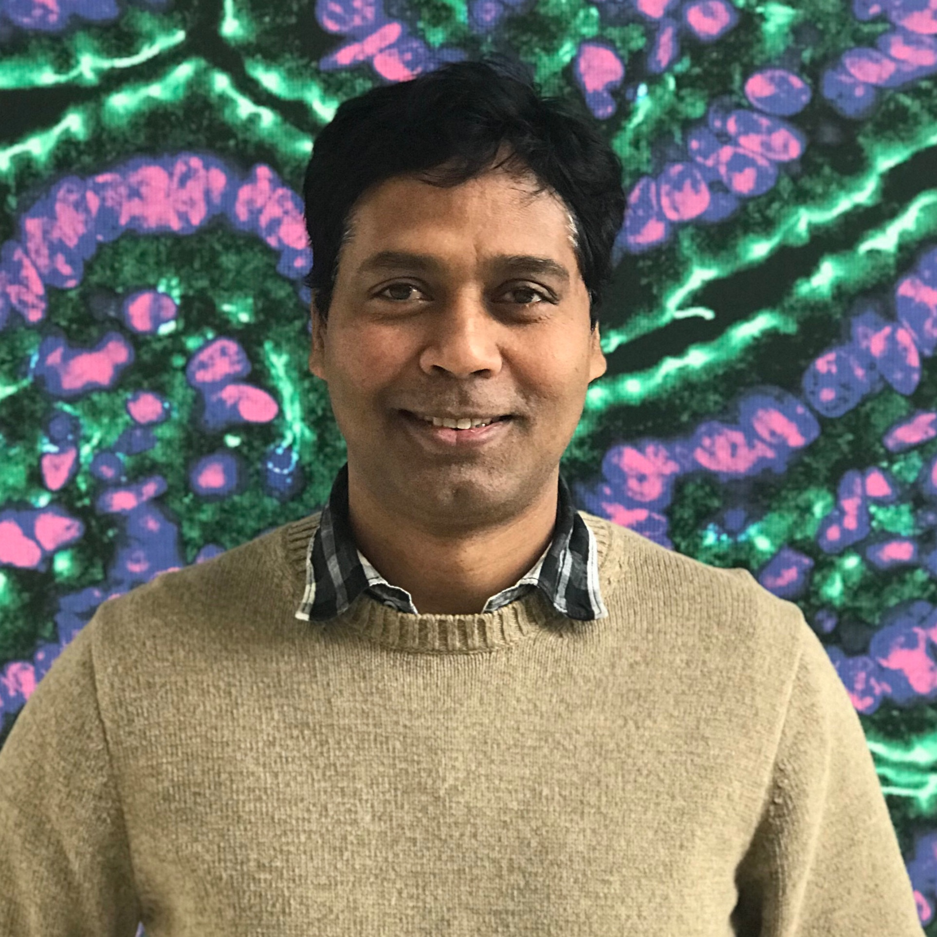 Vivek Yadav, Ph.D. - Research Investigator