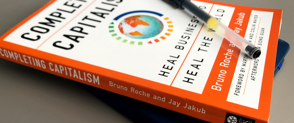 'Completing Capitalism' by Bruno Roche and Jay Jakub -