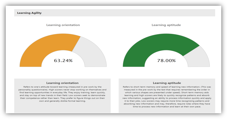 This graphic shows the learning agility analytics tab.