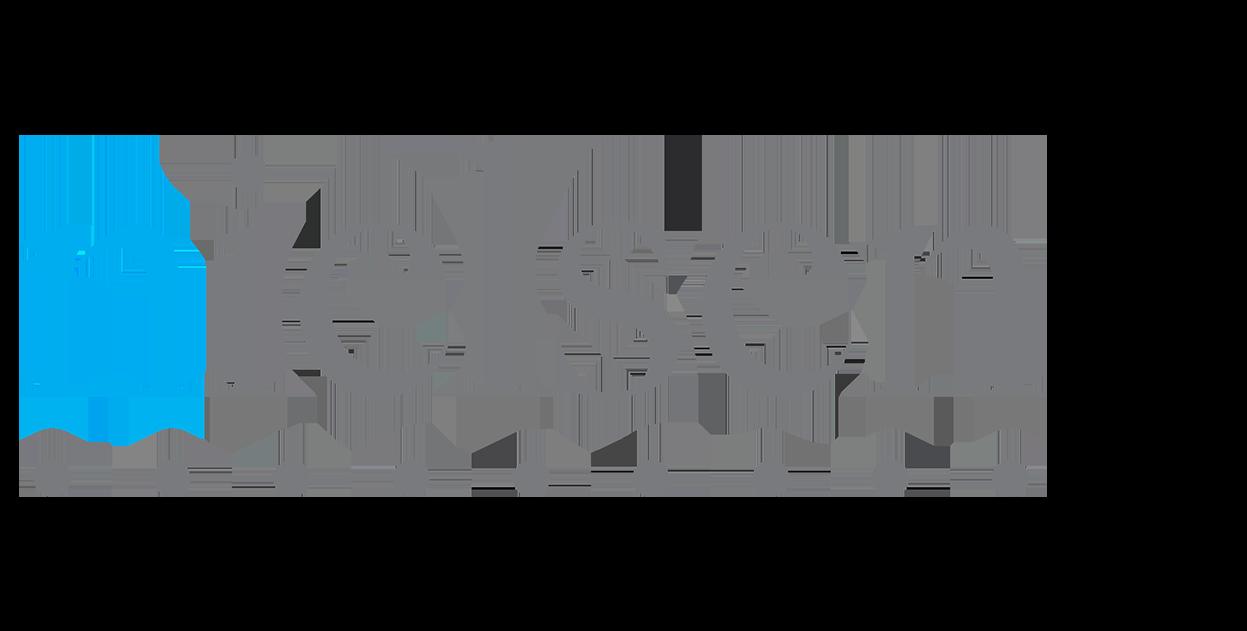 Nielsen_2.png