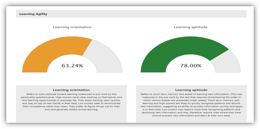 This graphic shows a participant's learning orientation and learning aptitude percentages.