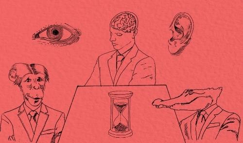 Meetings-between-creatures-kopia-8.jpg