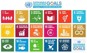 UN+SDG+17last+ned.jpg