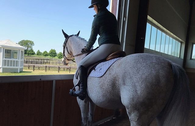 There is no other feeling than being on a horse 🥰  #jaguargreen #lenox #koniaequestrian #mykonia #lightweight #grey #madeincanada #equestrianfashion #equestrianstyle #equestrianouterwear