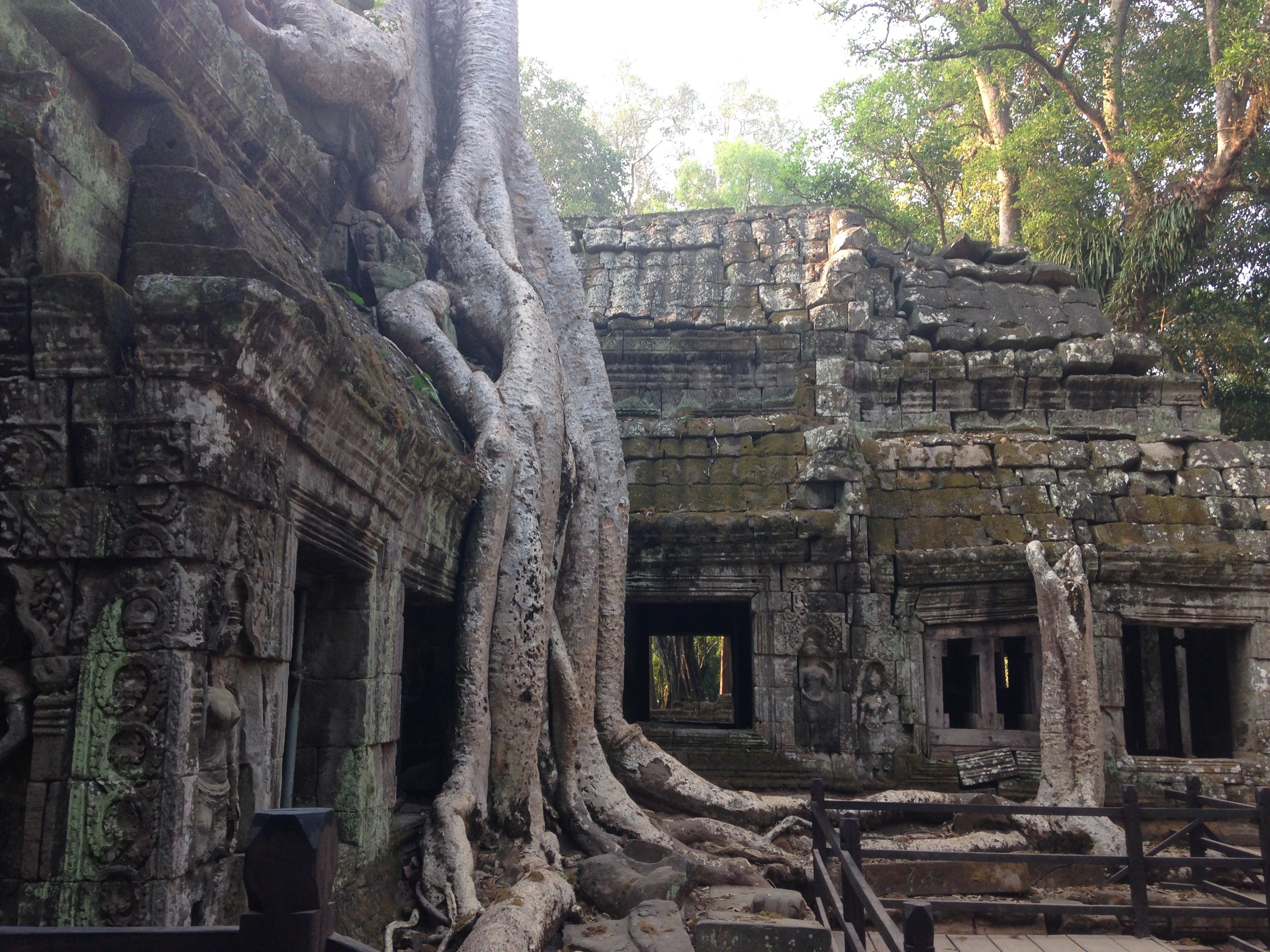 My favourite, saved to almost last. Magical Ta Prohm.