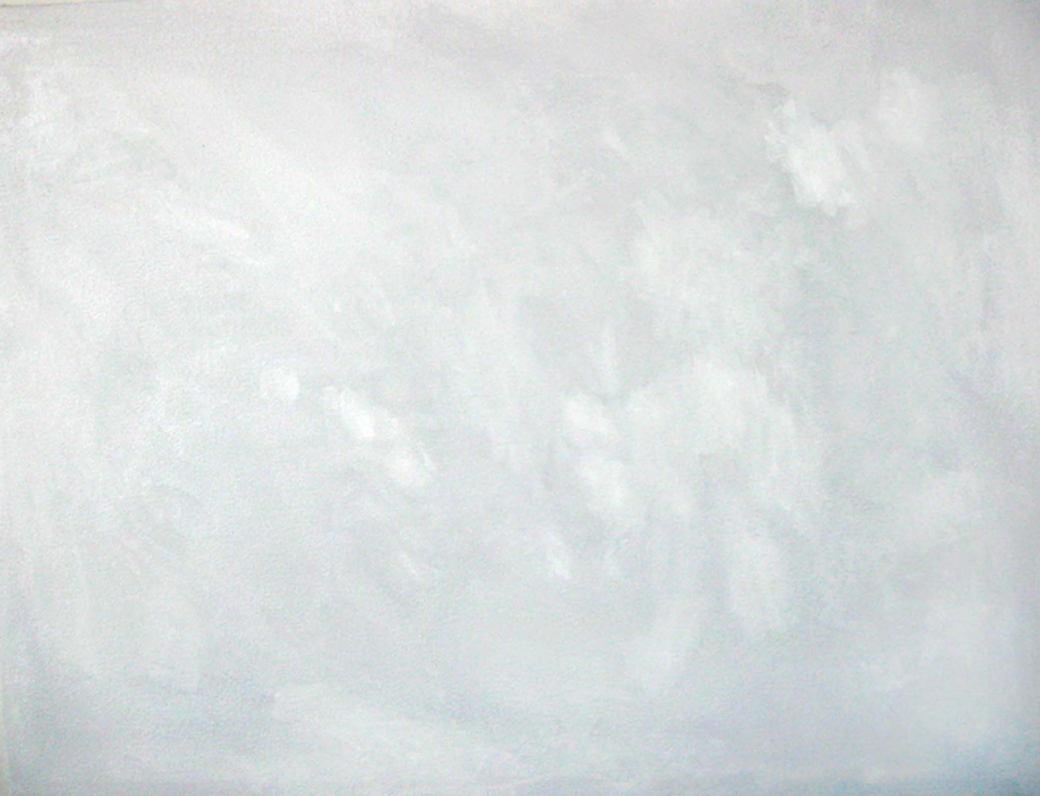 """Beyond the shadow of a doubt,  2005, huile sur toile / oil on canvas, 25""""x 20"""", 51 x 64 cm."""
