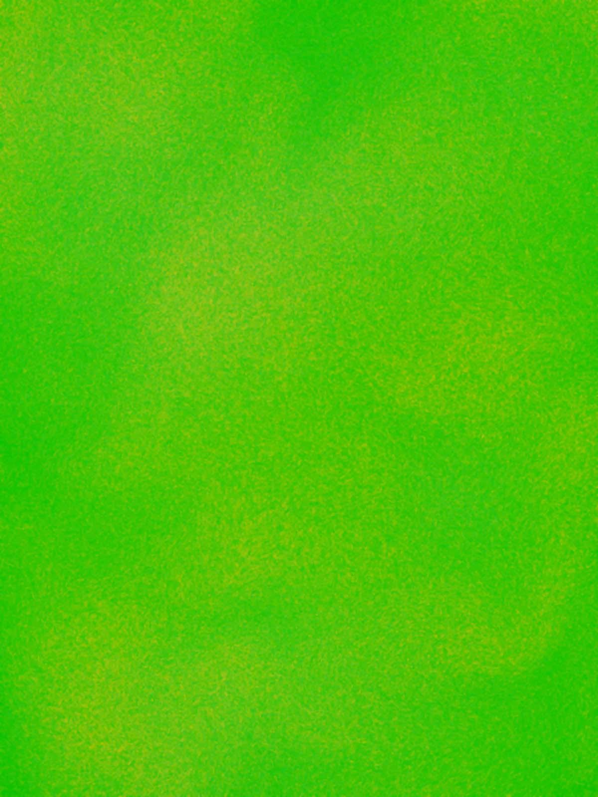 Vert , 2007, huile sur tableau / oil on painting, 7' X 5' 6'', 2,14 X 1,68 m.