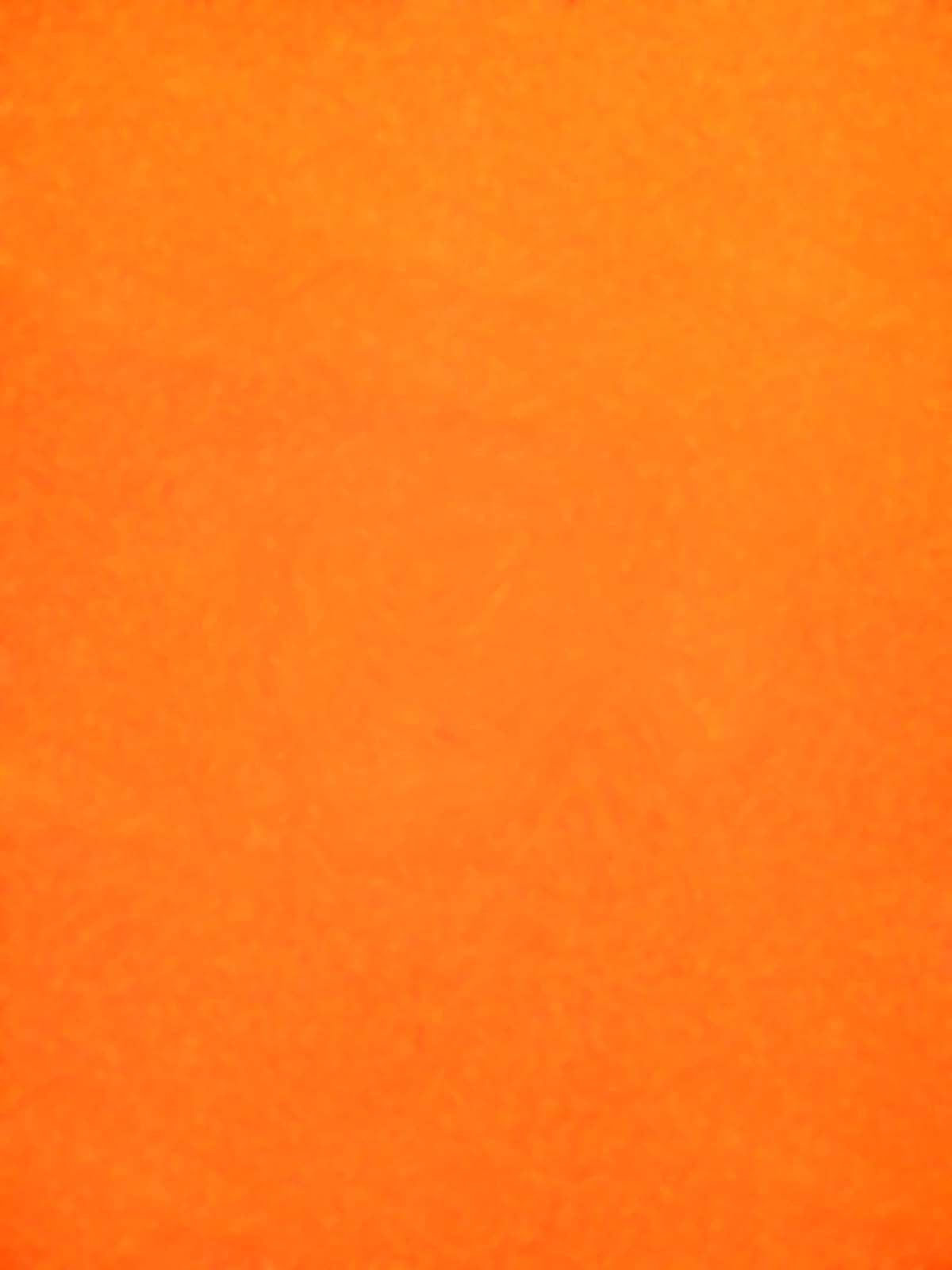 Orange , 2007, huile sur tableau / oil on painting, 7' X 5' 6'', 2,14 X 1,68 m.