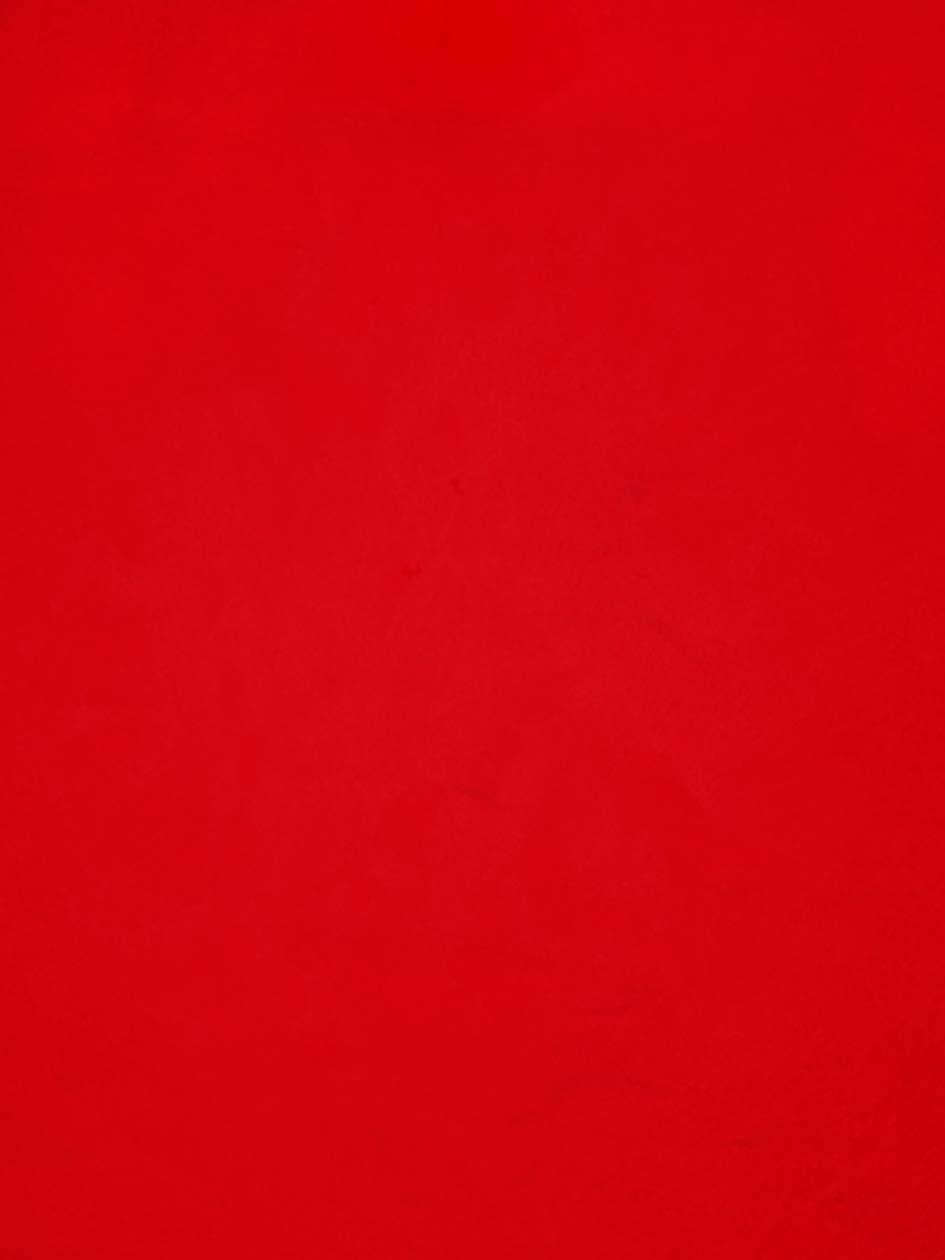 Rouge , 2007, huile sur tableau / oil on painting, 7' X 5' 6'', 2,14 X 1,68 m.