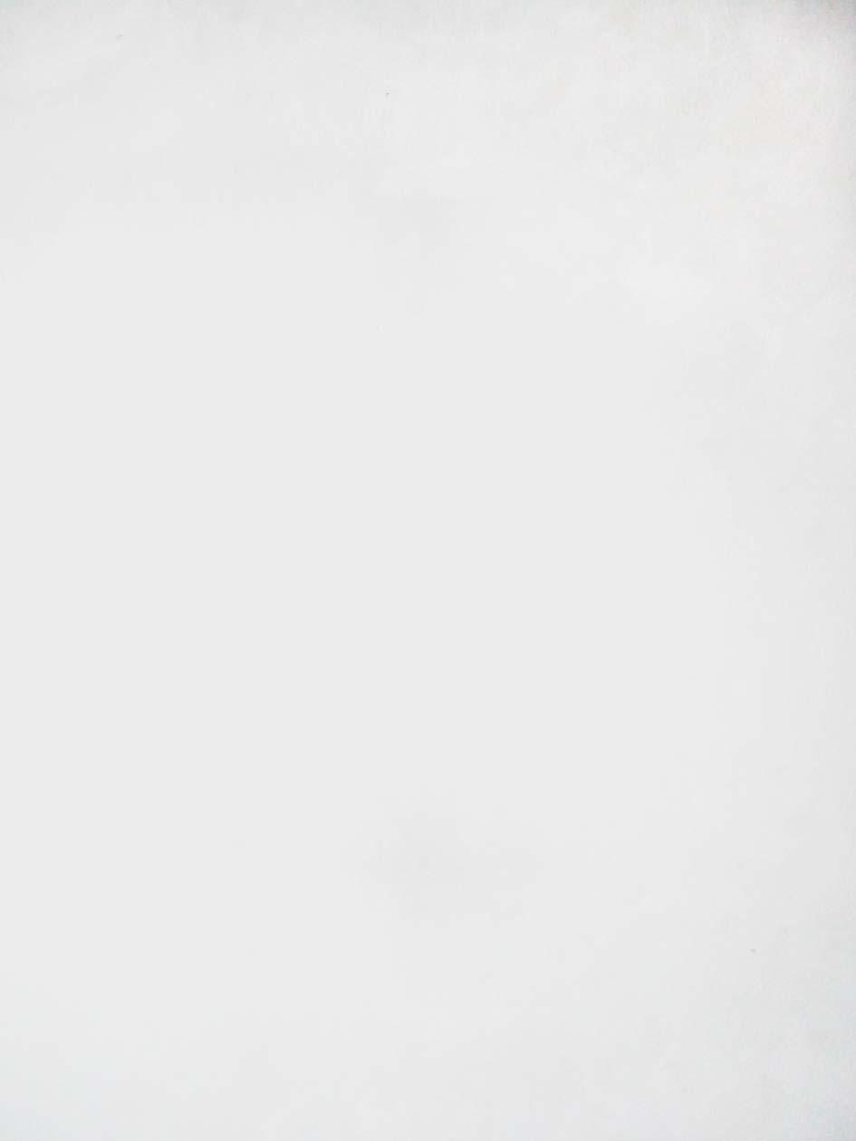 Blanc , 2007, huile sur tableau / oil on painting, 7' X 5' 6'', 2,14 X 1,68 m.