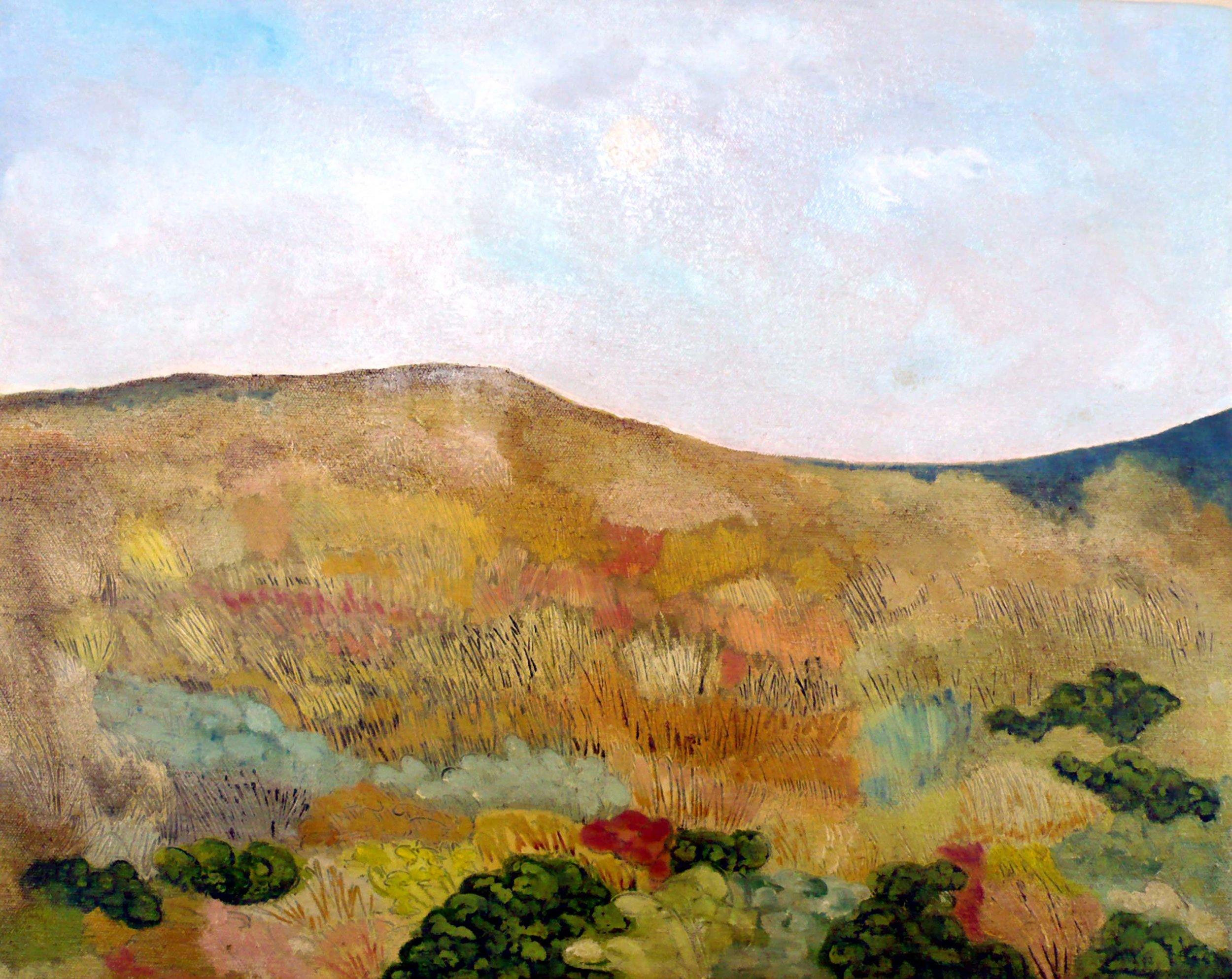 Paysage No 5 , circa 2008, huile sur toile / oil on canvas