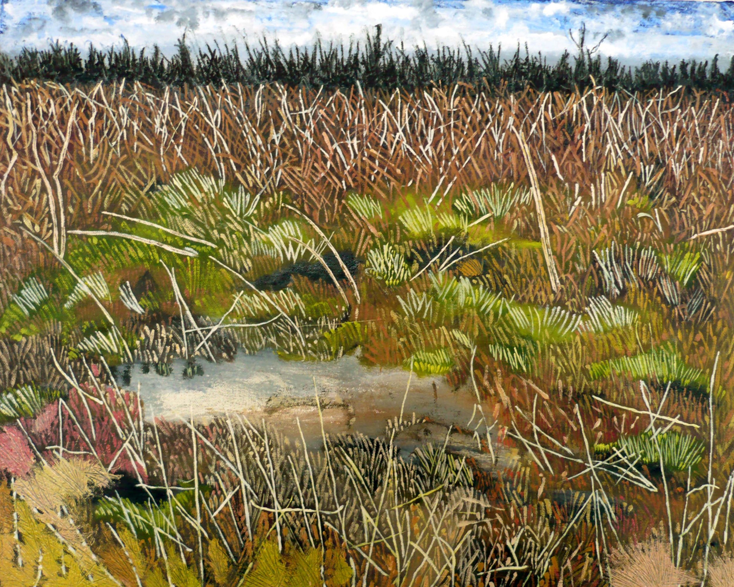 Paysage No 6 , circa 2008, huile sur toile / oil on canvas