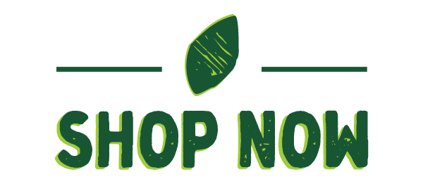 Shop-Now-1.png