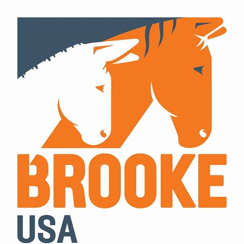 Brooke USA - Mission: To Improve The Welfare Of Working Horses, Donkeys And Mules And The People They Serve Throughout Asia, Africa, The Middle East And Latin America By Raising Funds And Responsibly Directing Them To The Areas Of Greatest Need.