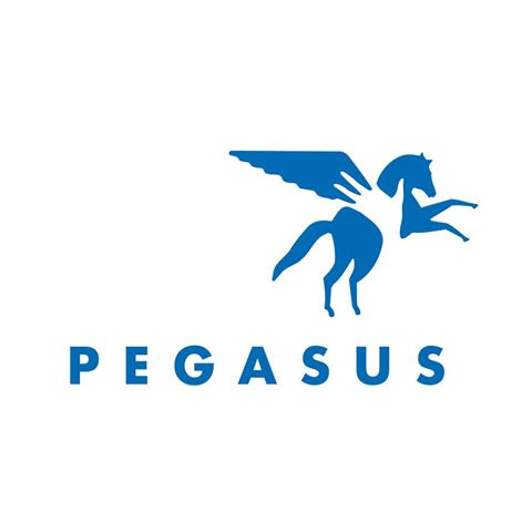 Pegasus - Pegasus Therapeutic Riding's mission is to enhance the lives of individuals with disabilities and challenges through equine-assisted activities and therapies.
