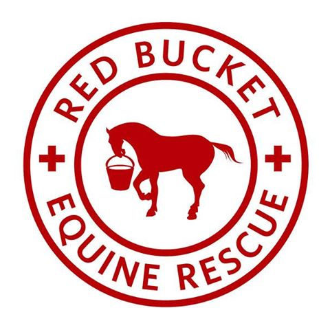 Red Bucket Equine Rescue - Is committed to saving and serving slaughter-bound, abused, high-risk and desperate horses.