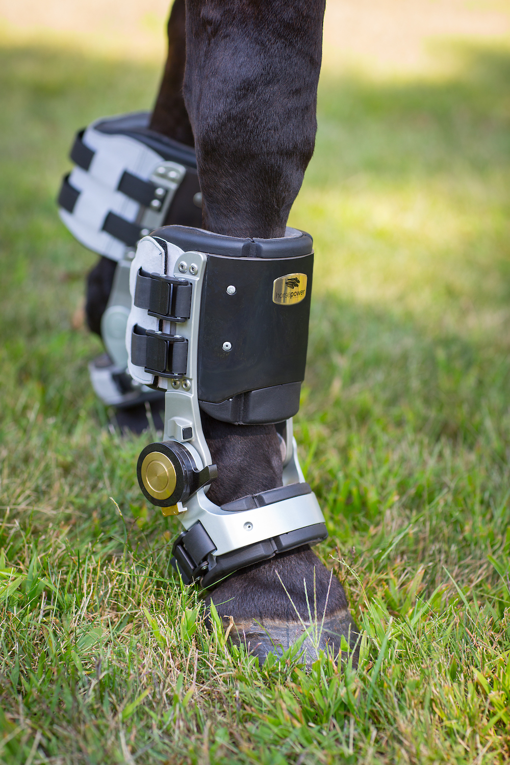Closeup of the world's first rehabilitative orthotic device for horses.