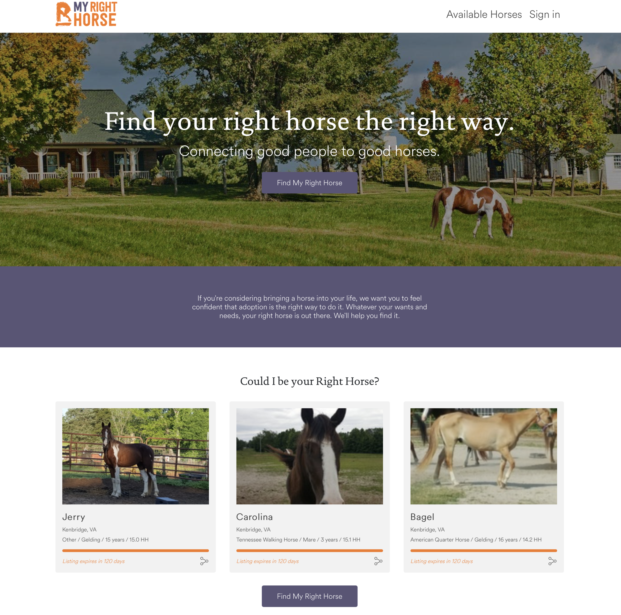 My Right Horse home page is easy to use and offers location and organization search capabilities.