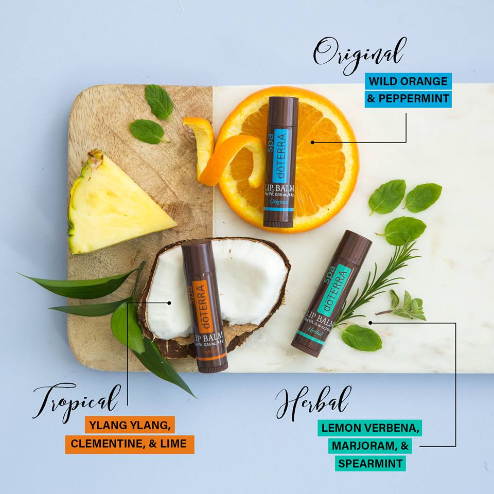 Tropical, Herbal, Original Lip Balm.jpg