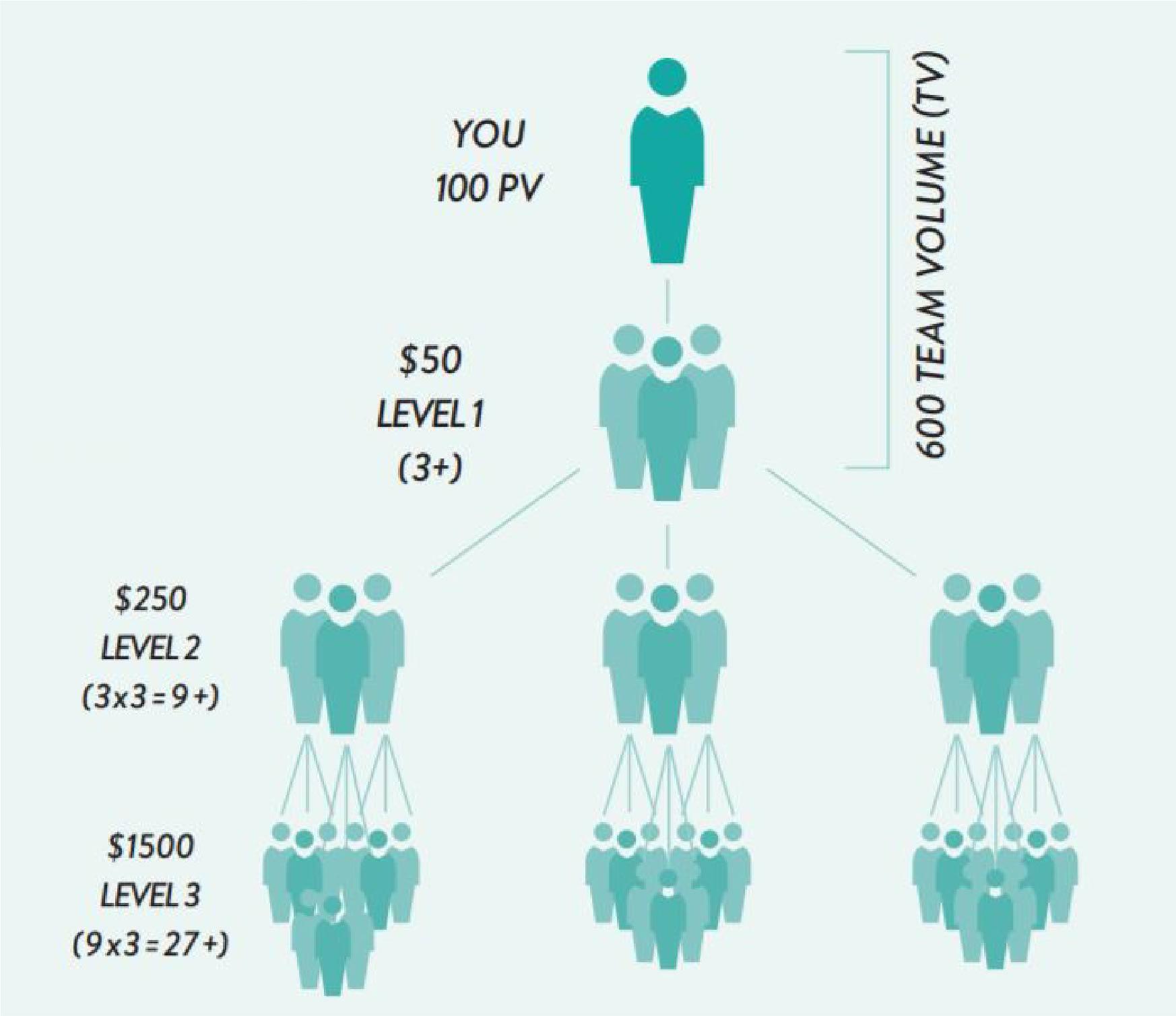 Power of 3Team Bonus - Paid monthly based on structure. Each team needs 600 TV to receive this sponsor bonus.